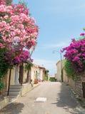 Bloemen door de straat stock foto