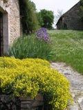 Bloemen door een steenmuur Royalty-vrije Stock Afbeeldingen