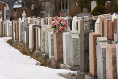 Bloemen in een begraafplaats in de winter Royalty-vrije Stock Foto's