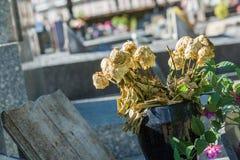 Bloemen in een begraafplaats met grafstenen op achtergrond Stock Afbeelding