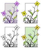 Bloemen in een frame Stock Foto
