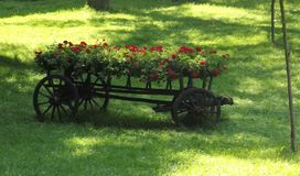 Bloemen in een kar met houten wielen vector illustratie