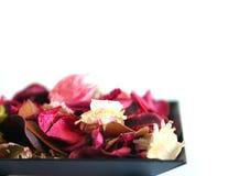 Bloemen in een kom Stock Afbeeldingen