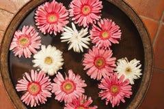 Bloemen in een kom, Nepal Stock Foto's