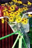 Bloemen in een mand stock foto