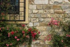 Bloemen in een muur Royalty-vrije Stock Afbeelding