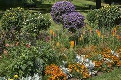 Bloemen in een park op een zonnige dag stock fotografie