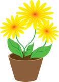 Bloemen in een pot Stock Illustratie