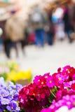 Bloemen in een straathoogtepunt van mensen stock afbeelding