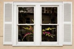 Bloemen in een Wit Venster Stock Fotografie