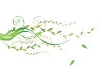 Bloemen element Stock Afbeelding