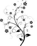 Bloemen elementen voor ontwerp,   stock illustratie
