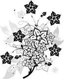 Bloemen elementen voor ontwerp,   vector illustratie