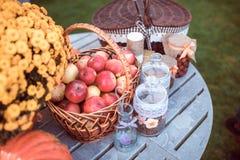 Bloemen en appelen royalty-vrije stock foto