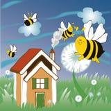 Bloemen en bijen Stock Foto