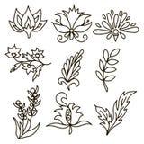 Bloemen en bladeren Individueel element Vector royalty-vrije illustratie