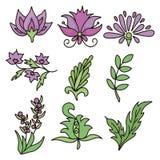 Bloemen en bladeren Individueel element Vector vector illustratie
