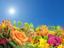 Bloemen en bluesky bacground royalty-vrije stock afbeeldingen