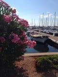 Bloemen en boten Royalty-vrije Stock Afbeeldingen