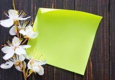 Bloemen en document stock afbeeldingen