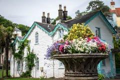 Bloemen en een huis royalty-vrije stock afbeelding