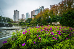 Bloemen en fontein in Hong Kong Zoological And Botanical Garde Royalty-vrije Stock Fotografie