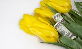 Bloemen en geld Royalty-vrije Stock Foto's