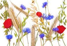 Bloemen en graangewassen royalty-vrije stock foto