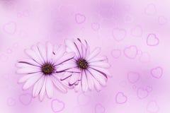 Bloemen en Harten Stock Foto