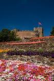 Bloemen en het kasteel Stock Foto