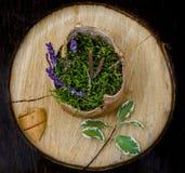 Bloemen en installaties op houten ronde Royalty-vrije Stock Foto's