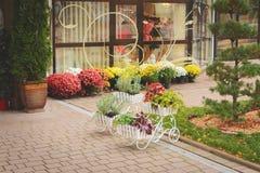 Bloemen en installatiestribune in potten in de vorm van karren op de straat stock foto's