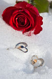 Bloemen en juwelier Royalty-vrije Stock Afbeeldingen