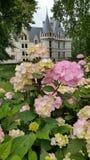 Bloemen en Kasteel Royalty-vrije Stock Afbeeldingen