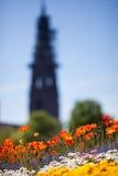 Bloemen en kerk in Freiburg, Duitsland stock fotografie