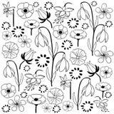 Bloemen en krabbel van de blad de hand getrokken schets stock illustratie