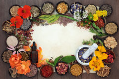 Bloemen en Kruiden voor Kruidengeneeskunde stock foto's