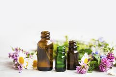 Bloemen en kruidenetherische olieflessen, natuurlijke aromatherapy wi stock fotografie