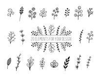 Bloemen en kruidenreeks Botanische elementen voor ontwerp op een witte achtergrond Schets van tak, gebladerte, bladeren, bessen royalty-vrije illustratie