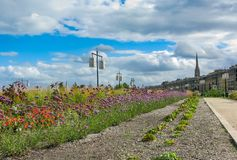 Bloemen en lichten op de waterkant Bordeaux royalty-vrije stock foto
