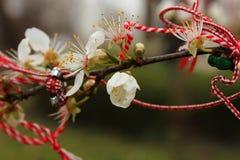 Bloemen en lint van geheugen Stock Foto