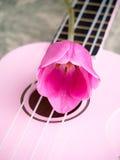 Bloemen en Muziek - doorboor Tulp stock afbeeldingen