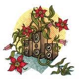 Bloemen en muzieksprekers. Stock Afbeeldingen