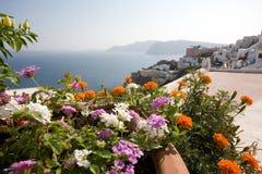 Bloemen en Oia, Santorini Stock Afbeeldingen