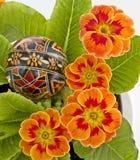 Bloemen en Oostelijke egs Stock Foto