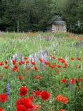 Bloemen en Oud Huis Stock Foto