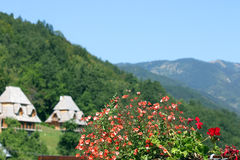 Bloemen en plattelandshuisjesberglandschap Stock Afbeeldingen