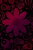 Bloemen en retro motieven Stock Fotografie
