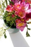 Bloemen en schaduw Stock Foto
