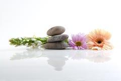 Bloemen en stenen - kuuroordthema Stock Foto's